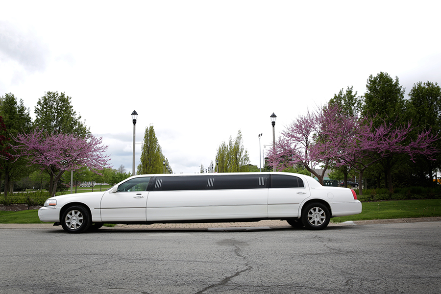White 10 Person Limousine