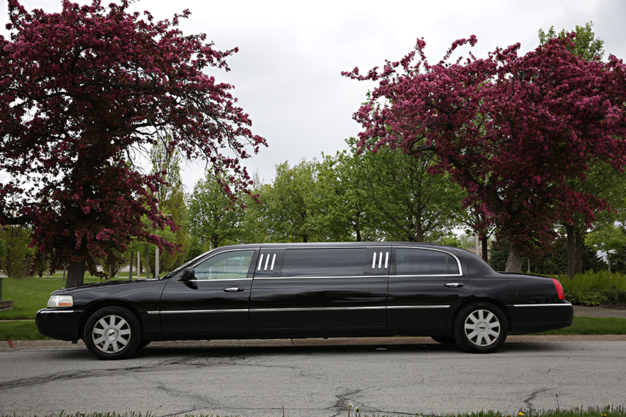 6 Person Limousine